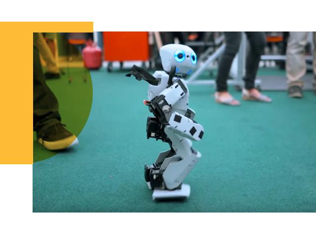 Robots of RoMeLa